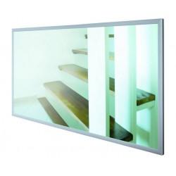 ECOSUN G 600W mirror
